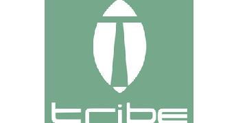 Tribe hair and beauty logo